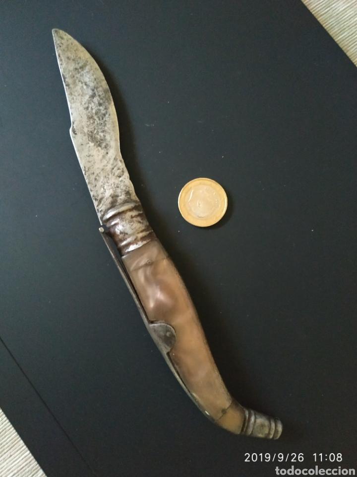 Antigüedades: Navaja antigua tipo sevillana mango de celuloide - Foto 4 - 177495967