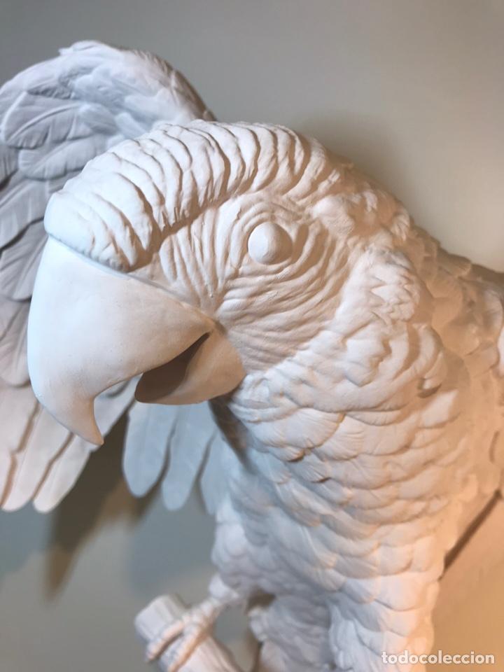 Antigüedades: Figura Porcelana Biscuit- España- Algora- Guacamayo- 55 cm (Loro Papagayo) - Foto 3 - 177817077