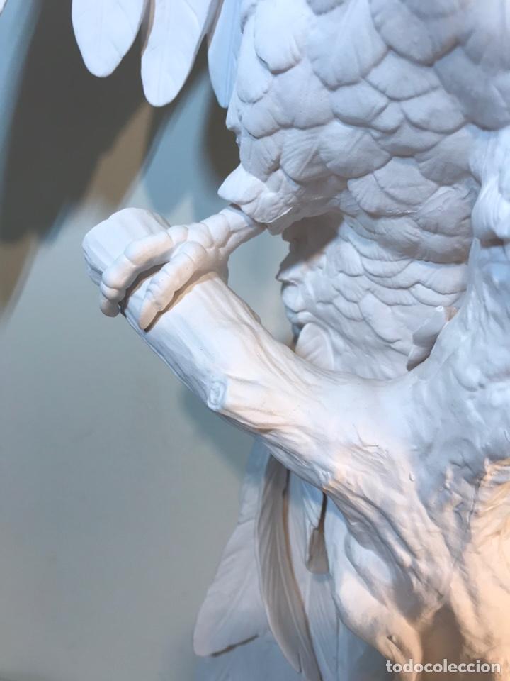 Antigüedades: Figura Porcelana Biscuit- España- Algora- Guacamayo- 55 cm (Loro Papagayo) - Foto 6 - 177817077