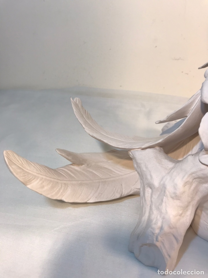 Antigüedades: Figura Porcelana Biscuit- España- Algora- Guacamayo- 55 cm (Loro Papagayo) - Foto 22 - 177817077