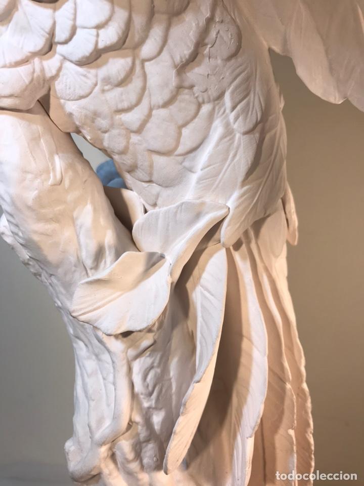Antigüedades: Figura Porcelana Biscuit- España- Algora- Guacamayo- 55 cm (Loro Papagayo) - Foto 24 - 177817077