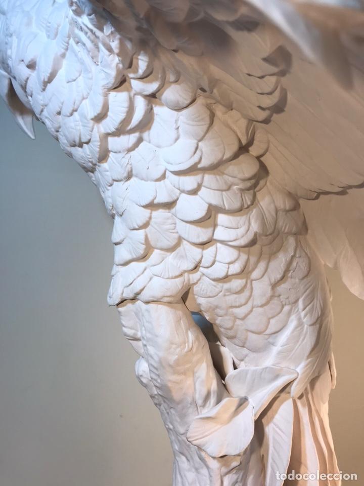 Antigüedades: Figura Porcelana Biscuit- España- Algora- Guacamayo- 55 cm (Loro Papagayo) - Foto 25 - 177817077