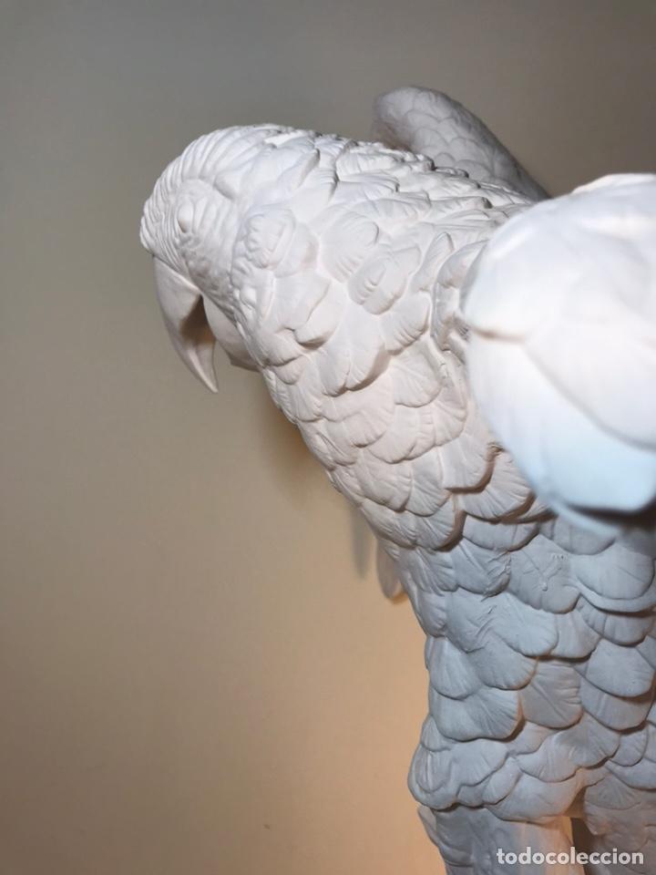 Antigüedades: Figura Porcelana Biscuit- España- Algora- Guacamayo- 55 cm (Loro Papagayo) - Foto 26 - 177817077