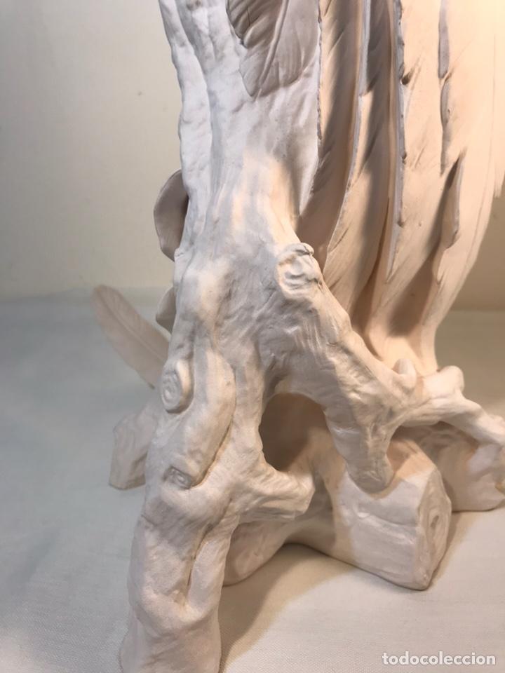 Antigüedades: Figura Porcelana Biscuit- España- Algora- Guacamayo- 55 cm (Loro Papagayo) - Foto 29 - 177817077