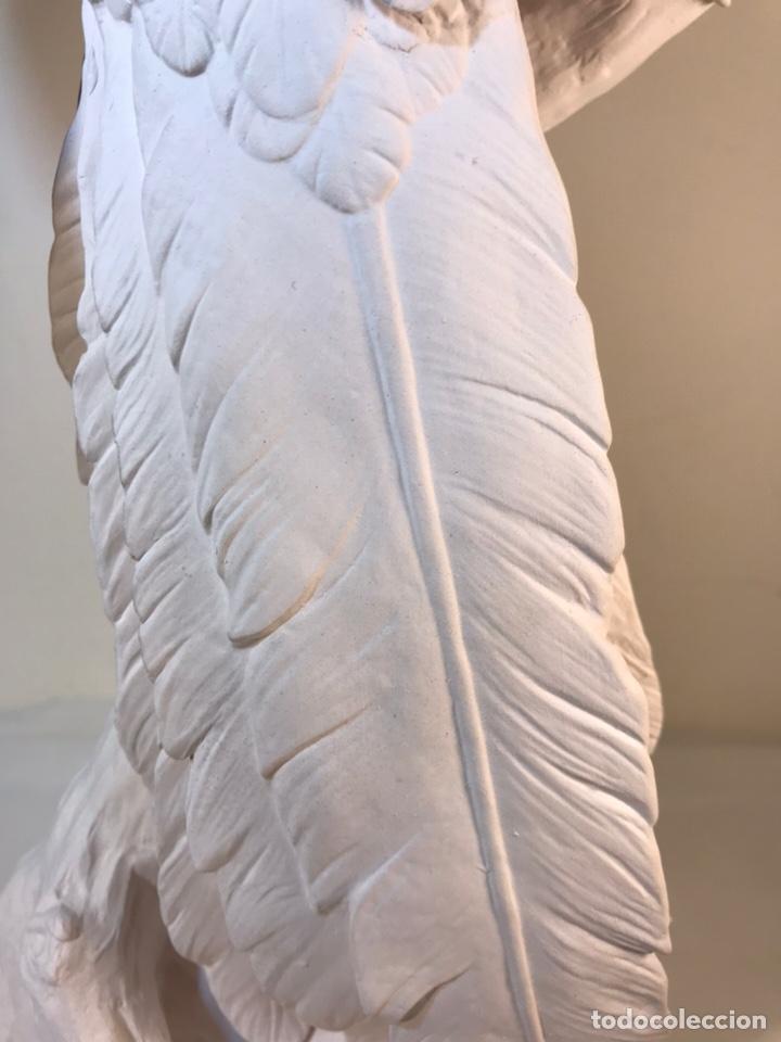 Antigüedades: Figura Porcelana Biscuit- España- Algora- Guacamayo- 55 cm (Loro Papagayo) - Foto 37 - 177817077