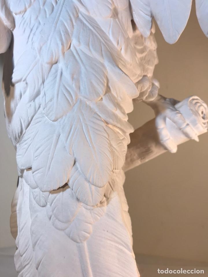 Antigüedades: Figura Porcelana Biscuit- España- Algora- Guacamayo- 55 cm (Loro Papagayo) - Foto 38 - 177817077
