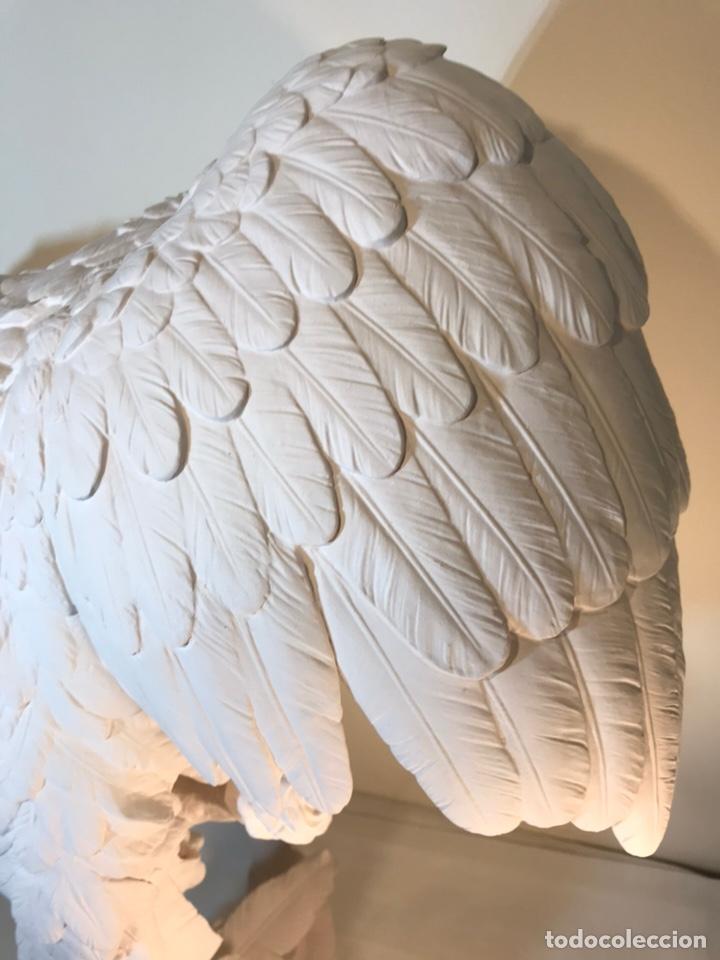Antigüedades: Figura Porcelana Biscuit- España- Algora- Guacamayo- 55 cm (Loro Papagayo) - Foto 41 - 177817077
