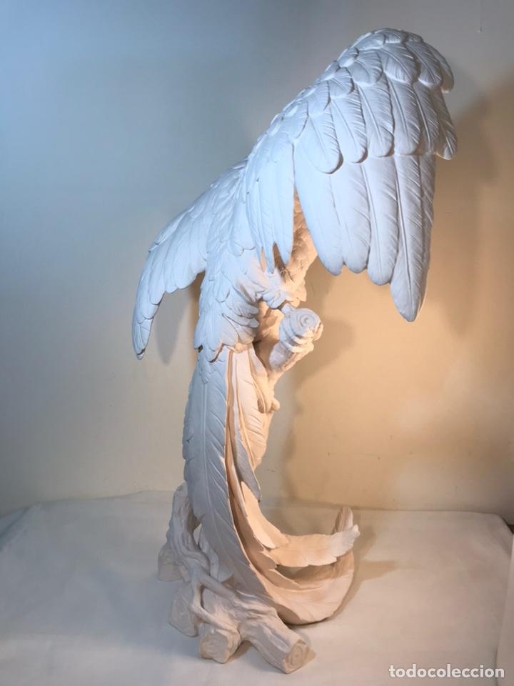 Antigüedades: Figura Porcelana Biscuit- España- Algora- Guacamayo- 55 cm (Loro Papagayo) - Foto 42 - 177817077