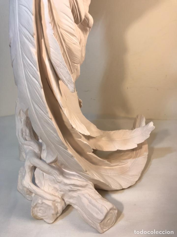 Antigüedades: Figura Porcelana Biscuit- España- Algora- Guacamayo- 55 cm (Loro Papagayo) - Foto 43 - 177817077