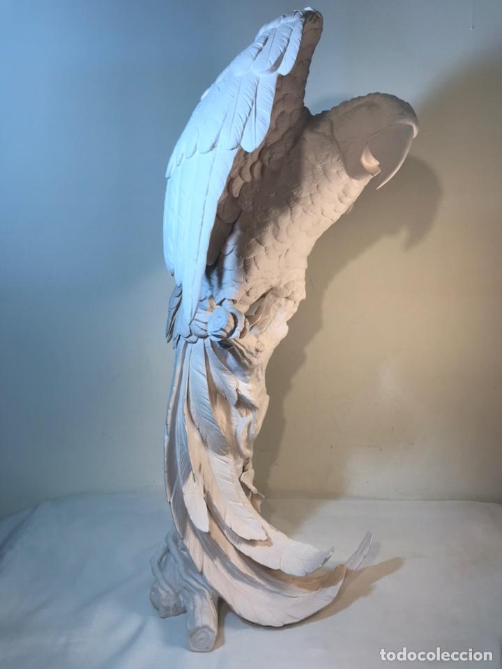 Antigüedades: Figura Porcelana Biscuit- España- Algora- Guacamayo- 55 cm (Loro Papagayo) - Foto 46 - 177817077
