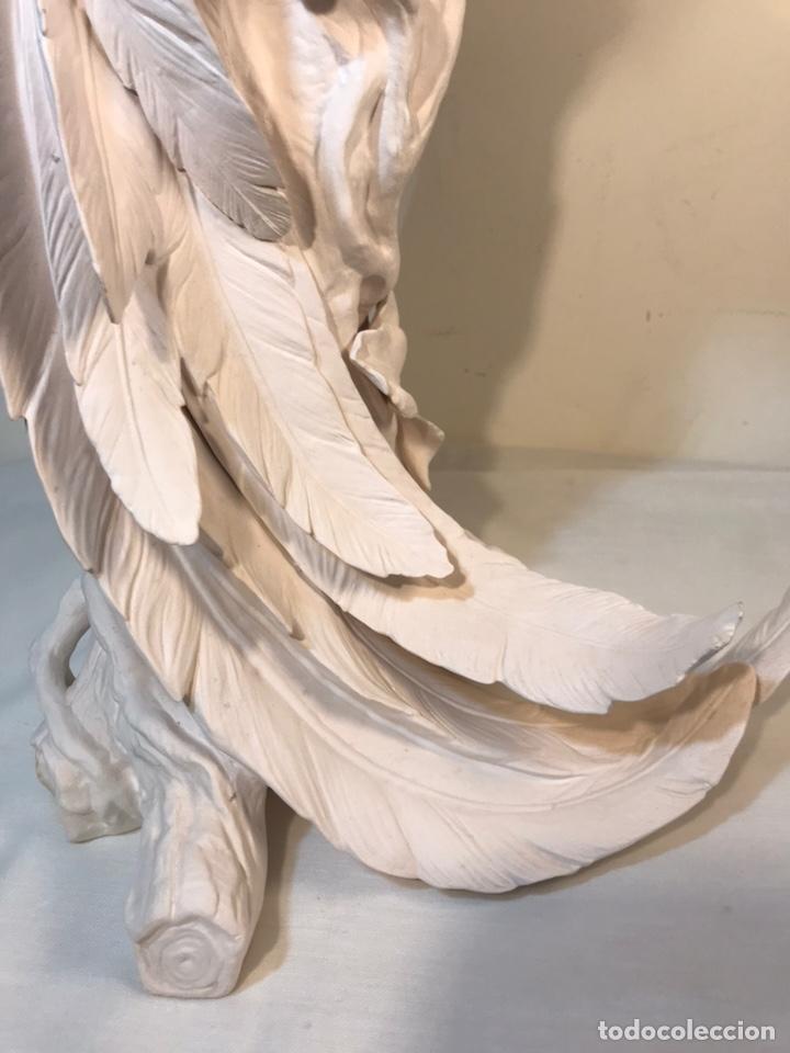 Antigüedades: Figura Porcelana Biscuit- España- Algora- Guacamayo- 55 cm (Loro Papagayo) - Foto 47 - 177817077
