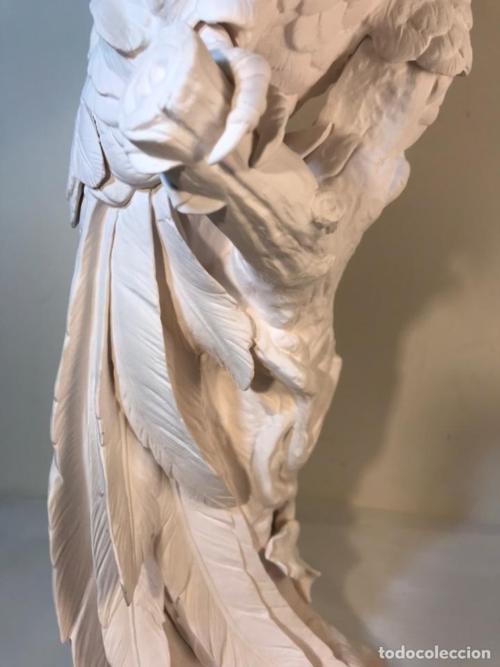 Antigüedades: Figura Porcelana Biscuit- España- Algora- Guacamayo- 55 cm (Loro Papagayo) - Foto 48 - 177817077