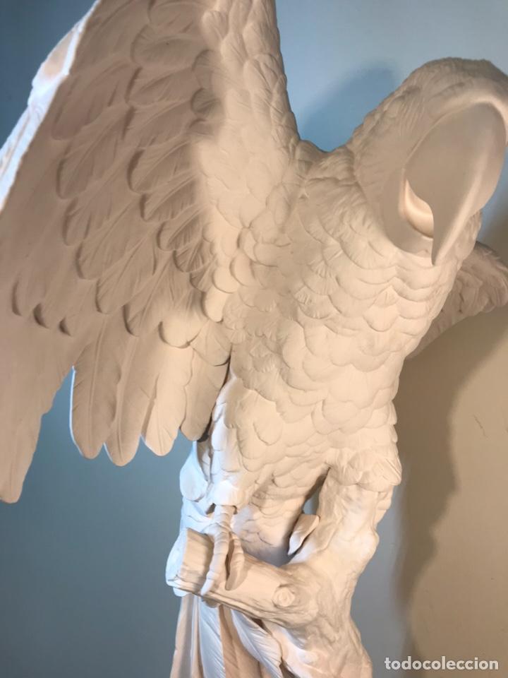 Antigüedades: Figura Porcelana Biscuit- España- Algora- Guacamayo- 55 cm (Loro Papagayo) - Foto 51 - 177817077