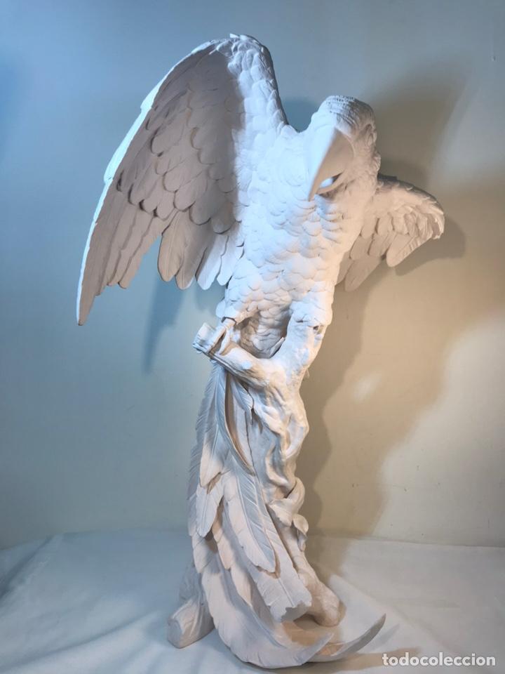 Antigüedades: Figura Porcelana Biscuit- España- Algora- Guacamayo- 55 cm (Loro Papagayo) - Foto 52 - 177817077