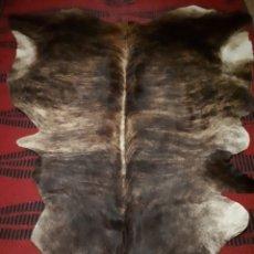 Antigüedades: ALFOMBRA PIEL DE VACA ENTERO TRATADO. Lote 177960535