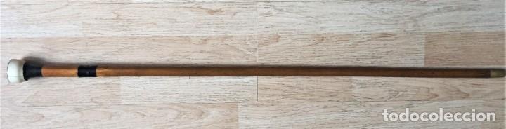 Antigüedades: Baston de madera y marfil - Foto 2 - 178163852