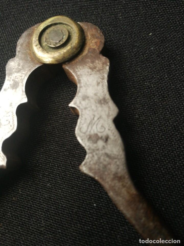 Antigüedades: Antigua pareja de cascapiñones - Foto 8 - 178637103