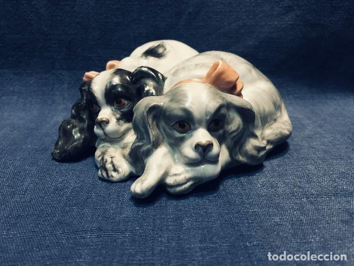 Antigüedades: pareja perros cavalier king charles spaniel Porcelana lazos acostados no marca 10 x 8 cm - Foto 13 - 178864597
