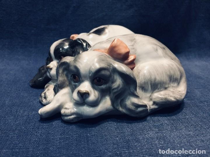 Antigüedades: pareja perros cavalier king charles spaniel Porcelana lazos acostados no marca 10 x 8 cm - Foto 8 - 178864597