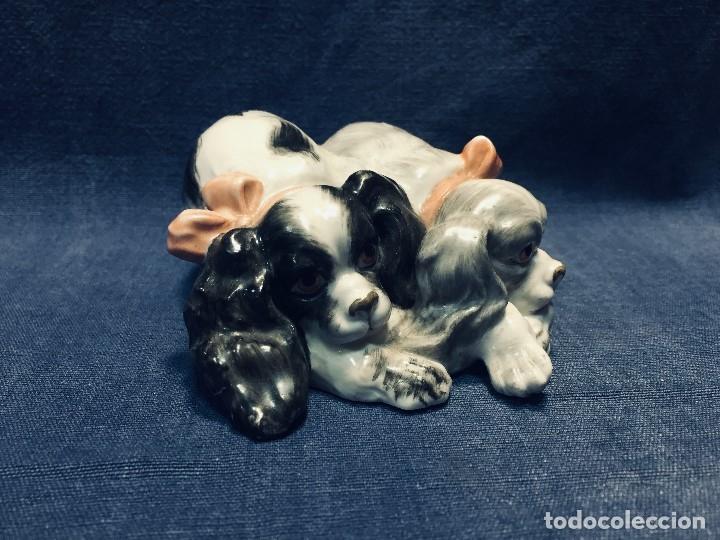 Antigüedades: pareja perros cavalier king charles spaniel Porcelana lazos acostados no marca 10 x 8 cm - Foto 12 - 178864597