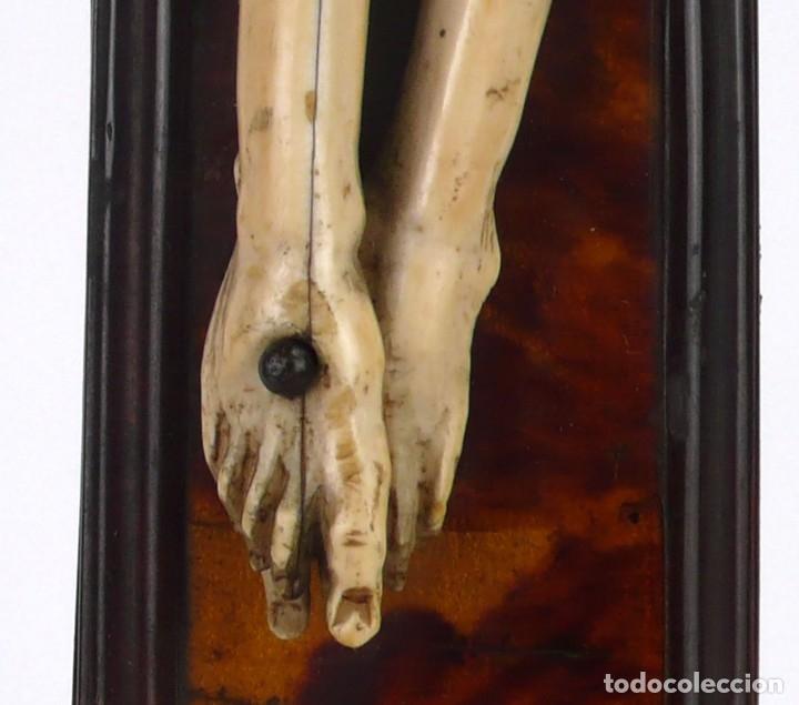 Antigüedades: Crucifijo -Cristo de marfil cruz de carey y madera ebonizada 34 x 56 cm - Siglo XIX o anterior - Foto 11 - 179563367