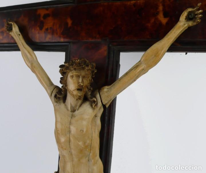 Antigüedades: Crucifijo -Cristo de marfil cruz de carey y madera ebonizada 34 x 56 cm - Siglo XIX o anterior - Foto 16 - 179563367