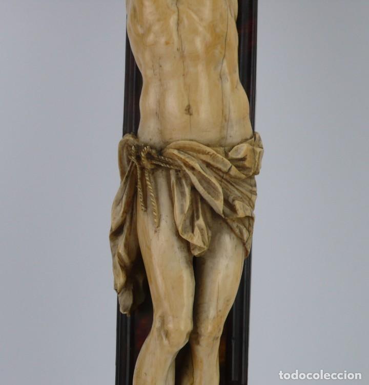 Antigüedades: Crucifijo -Cristo de marfil cruz de carey y madera ebonizada 34 x 56 cm - Siglo XIX o anterior - Foto 21 - 179563367