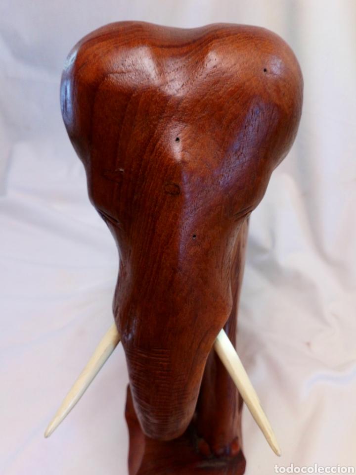 Antigüedades: Elefante tallado en madera - Foto 6 - 181188430
