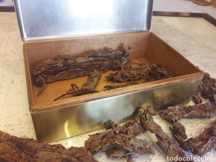 Antigüedades: Antigua caja de bronce, purera, interior en madera - Foto 7 - 172237745