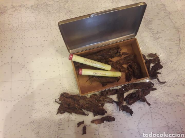 Antigüedades: Antigua caja de bronce, purera, interior en madera - Foto 11 - 172237745