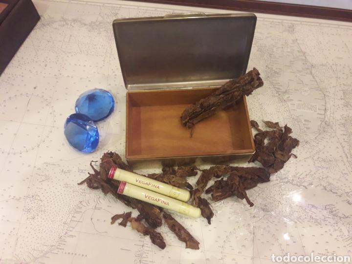 Antigüedades: Antigua caja de bronce, purera, interior en madera - Foto 14 - 172237745