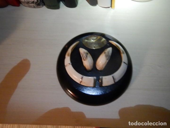 Antigüedades: Trofeo jabali - Foto 3 - 182066373