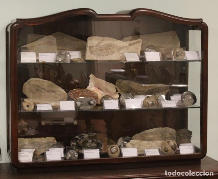 Antigüedades: Antigua cómoda con vitrina, madera de caoba - Foto 2 - 182512158