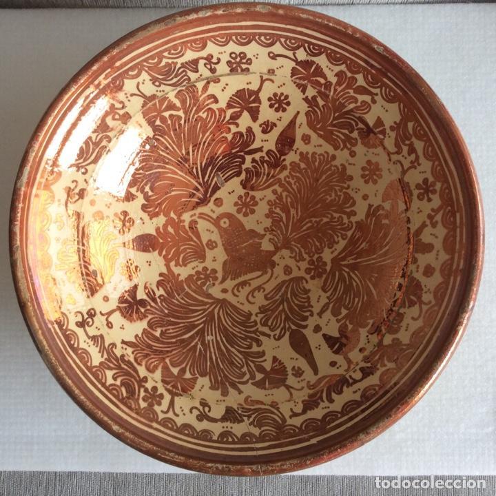 Antigüedades: Manises siglo XVIII Reflejo metálico o lustre - Foto 2 - 183618191