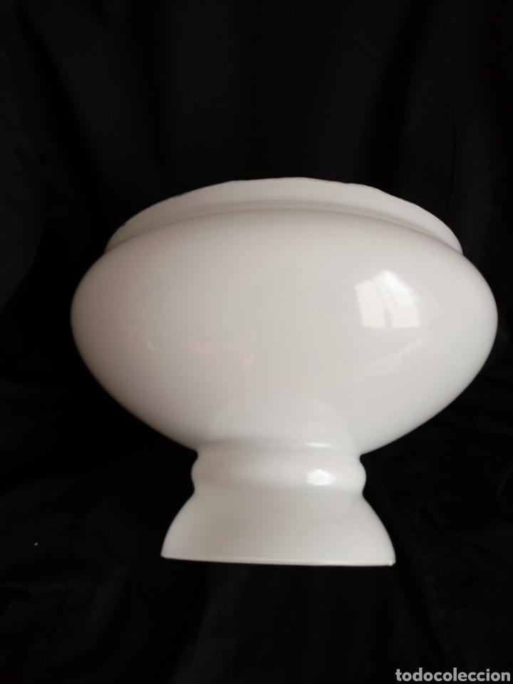 Antigüedades: Tulipa de opalina blanca para lámpara tipo quinque - Foto 13 - 184349538