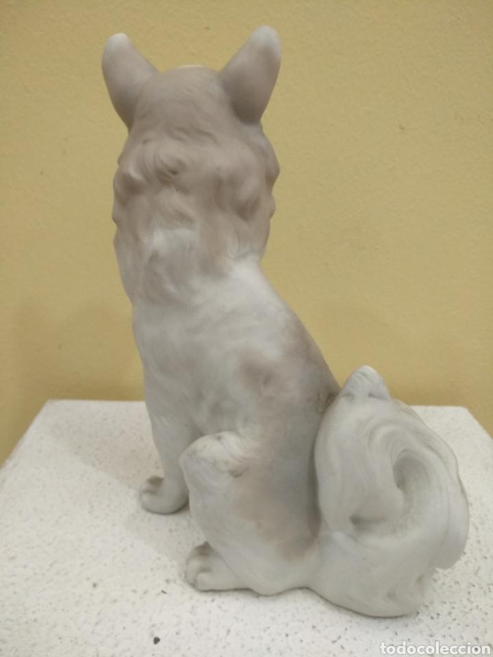 Antigüedades: Figura Perro de porcelana Nao. 21cm alto - Foto 3 - 184878482