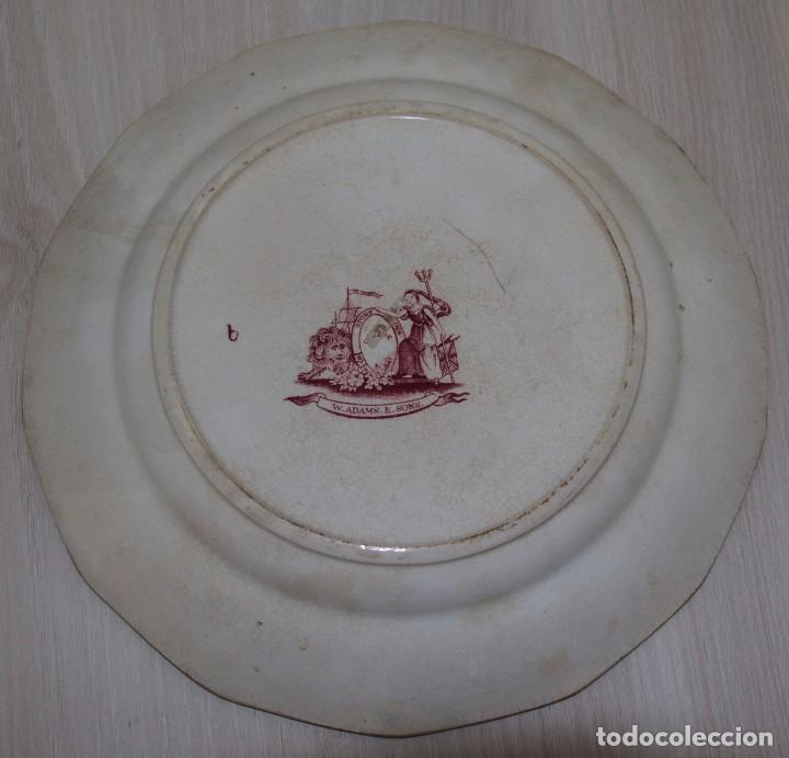 Antigüedades: Plato porcelana S.XIX - Adams & Sons - Foto 2 - 185747243