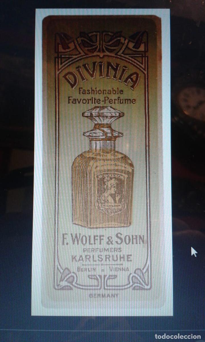 Antigüedades: Antiguo frasco de perfume DIVINIA (1900) sin abrir - Foto 2 - 187588603