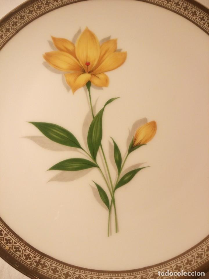 Antigüedades: Precioso plato de postre de porcelana winterling marktleuthen bavaria,decorado con oro y flor. - Foto 2 - 188478556