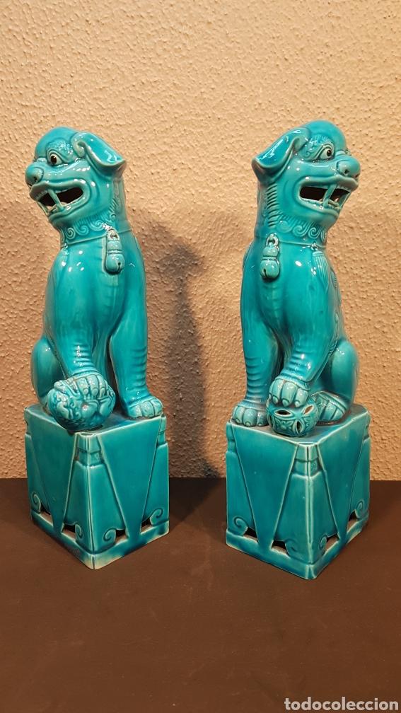 Antigüedades: Pareja leones perros furias Foo Fo cerámica esmaltada China S. XX. En buen estado de conservación. - Foto 2 - 188610083