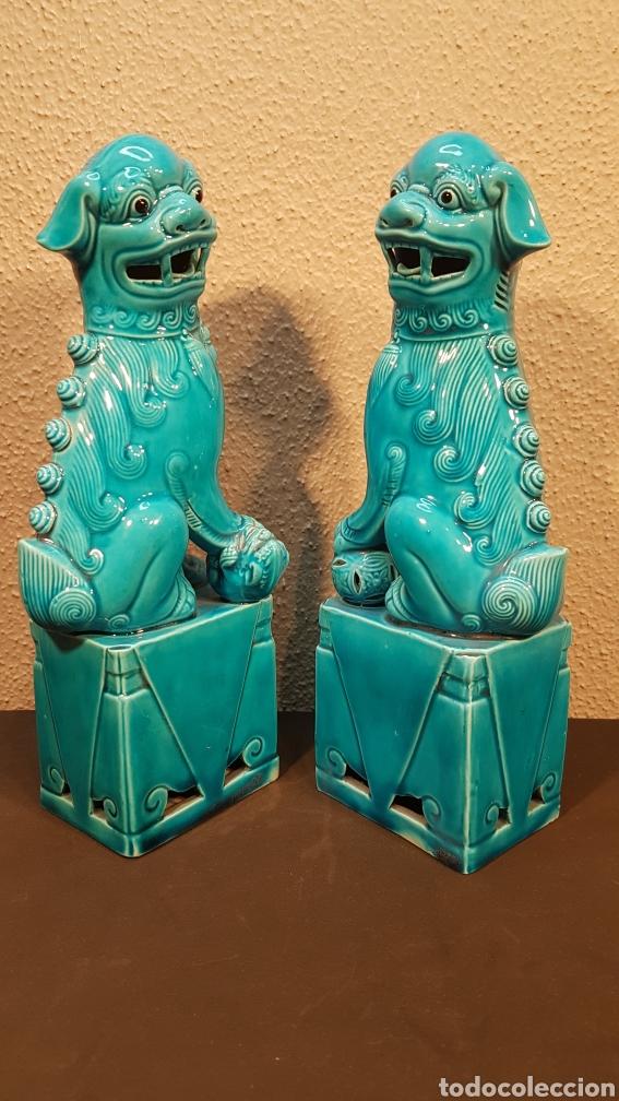 Antigüedades: Pareja leones perros furias Foo Fo cerámica esmaltada China S. XX. En buen estado de conservación. - Foto 3 - 188610083