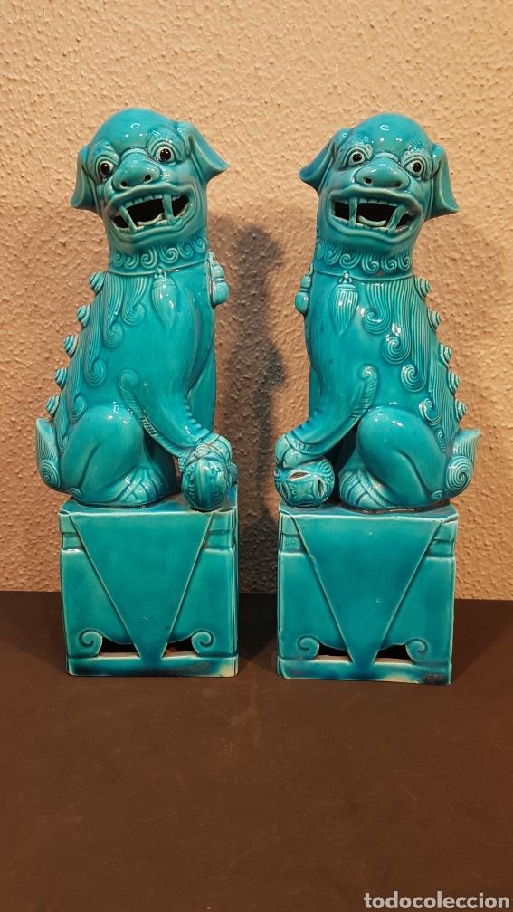 PAREJA LEONES PERROS FURIAS FOO FO CERÁMICA ESMALTADA CHINA S. XX. EN BUEN ESTADO DE CONSERVACIÓN. (Antigüedades - Porcelanas y Cerámicas - China)