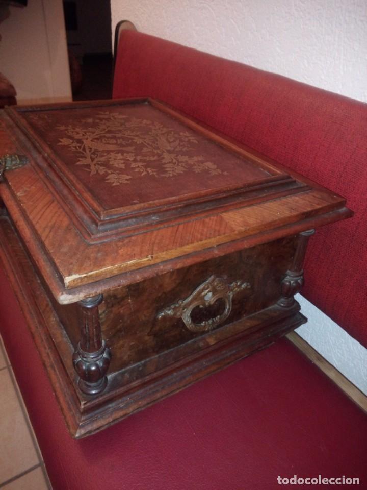 Antigüedades: Antiguo baúl cofre de despacho de madera de roble de raíz con incrustaciones y adornos de bronce. - Foto 14 - 189143608