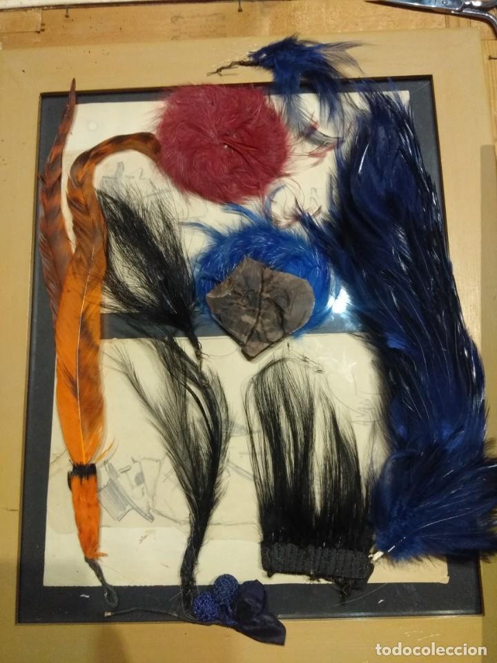 Antigüedades: Lote antiguas plumas copete sombrero p. Siglo XX. - Foto 2 - 190170463