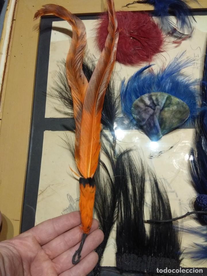 Antigüedades: Lote antiguas plumas copete sombrero p. Siglo XX. - Foto 10 - 190170463