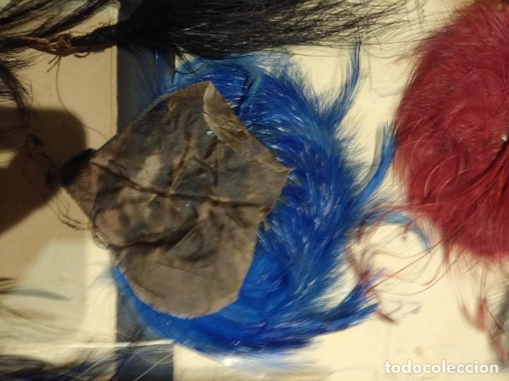 Antigüedades: Lote antiguas plumas copete sombrero p. Siglo XX. - Foto 12 - 190170463