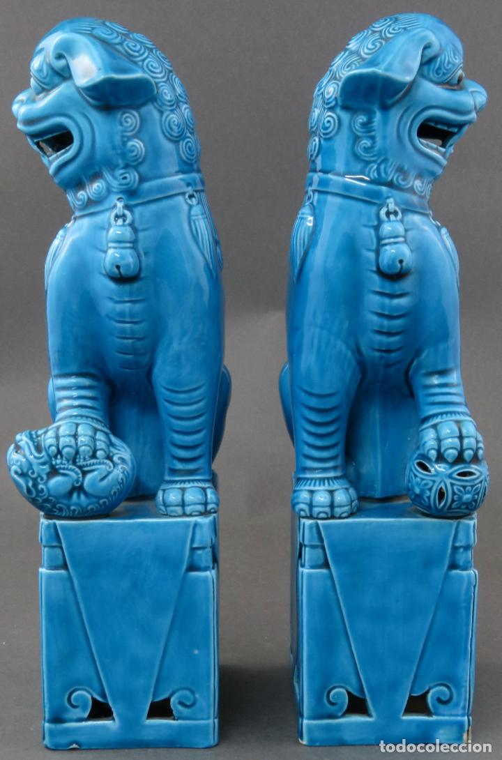 Antigüedades: Pareja Furias Foo en cerámica vidriada azul China siglo XX - Foto 2 - 190825156