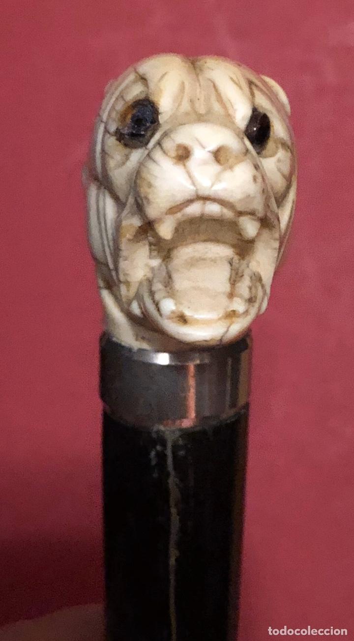 Antigüedades: Antiguo bastón en madera ebonizada, y empuñadura, en hueso o marfil. - Foto 5 - 242344950