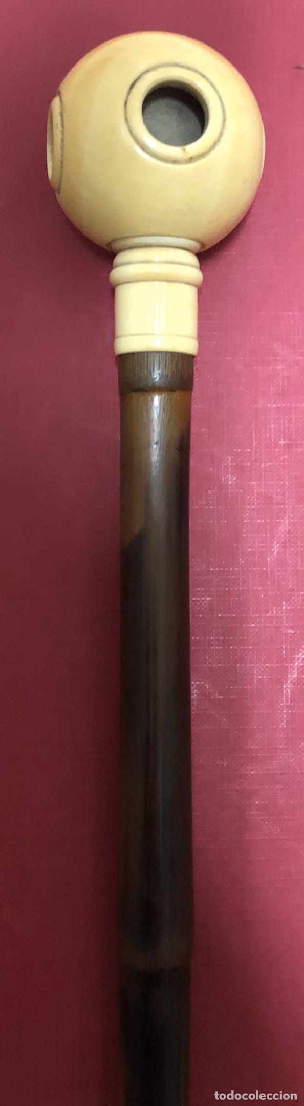 Antigüedades: Fantástico bastón antiguo, de caña, y empuñadura de hueso. - Foto 4 - 191220080