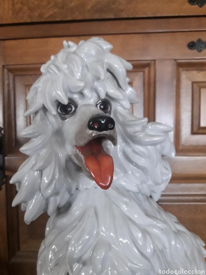 Antigüedades: Perro de porcelana de Algora, numerado - Foto 2 - 191264855